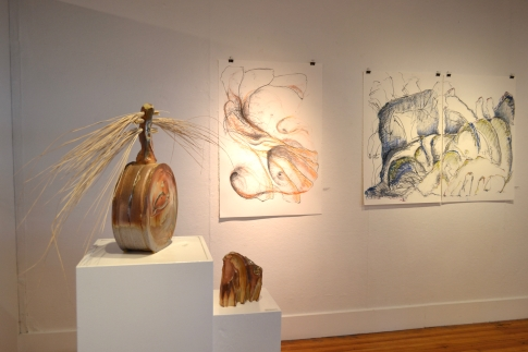 Visceral Elements solo exhibit, Bunnell St. Arts Center